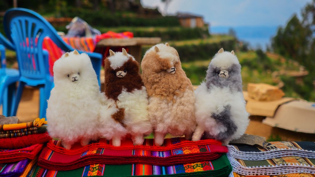 Handmade llama dolls is an affordable llama souvenir that tourist can find everywhere in Peru. credit shutterstock