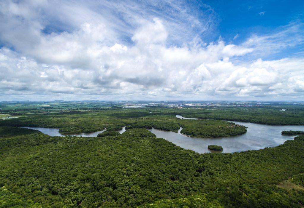 Aerial Shot of Amazon rainforest in Brazil, South America credit: Shutterstock