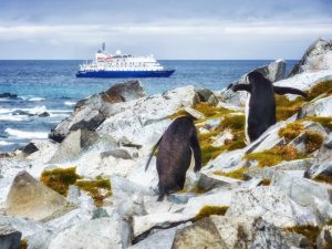 Cruise ship and Chinstrap penguin (Pygoscelis antarctica) at Antarctica credit shutterstock