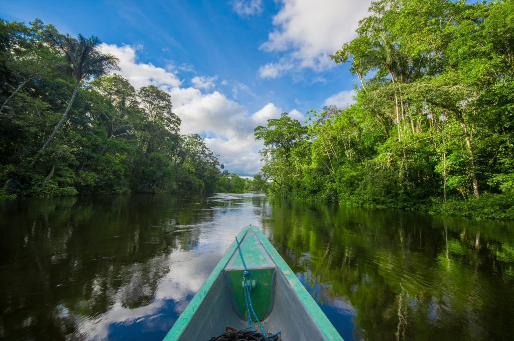 Travelling by boat into the depth of Amazon Jungles in Cuyabeno National Park, Ecuador credit shutterstock