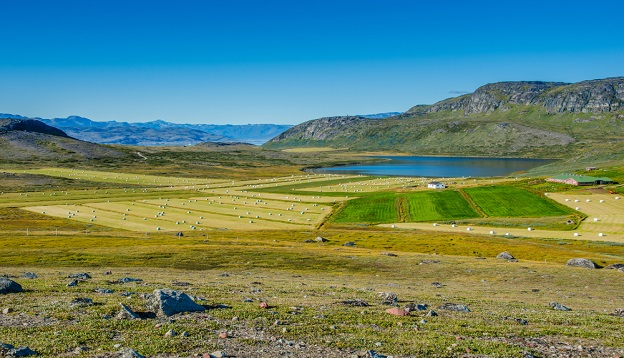 The land of a small village farm, Greenland.