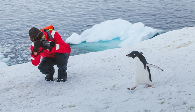 Tourist photographing the wildlife in Antarctica. Photo Credit: Shutterstock