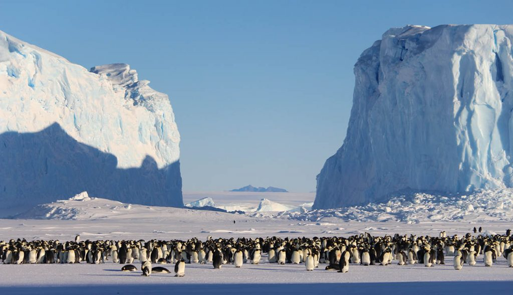 Dramatic landscape emperor penguins mountains icebergs