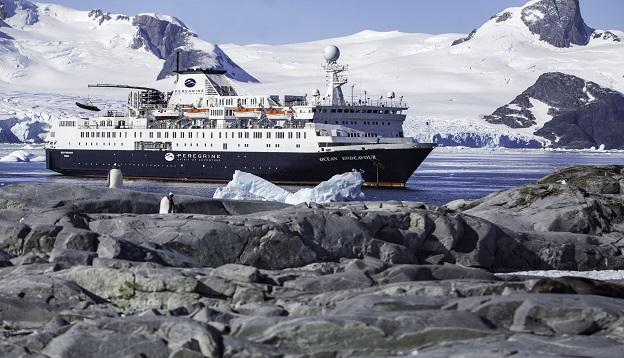 Falklands Island discovery