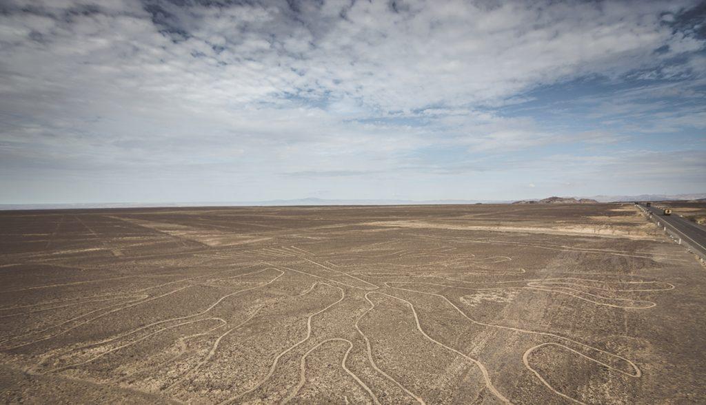 Tree (Arbol) lines in Nazca desert, Peru
