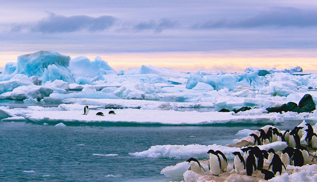 Beautiful view of icebergs in Antarctica