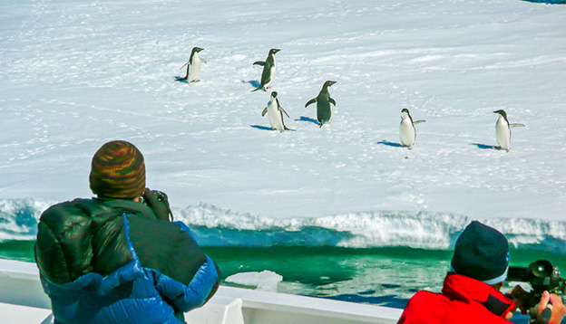 Passengers photograph adelie penguins, as the ship glides by the broken pack-ice that they're resting on