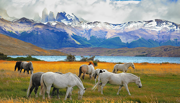 Sustainable Travel - Torres del Paine National Park