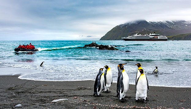 King Penguin Group, Antarctic landscape end expedition cruise ship background, South Georgia