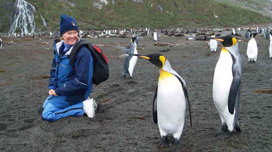 People and King Penguins on an Antarctica expedition